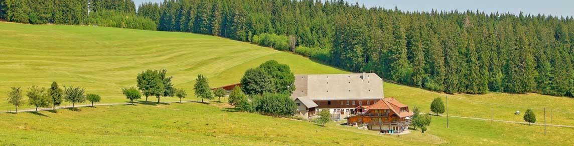 Der Hellewanderhof – Ferien im Hochschwarzwald